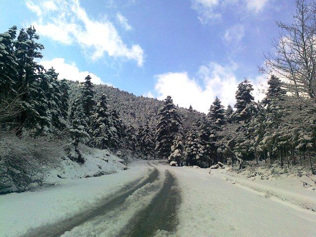 Aράχωβα -Χάνι Λιόλιου -Καστανιά -Ορεινή Ναυπακτία :μαγικά λευκά τοπία